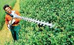 Hedge Trimmer Attachment Rental For Stihl Trimmers