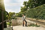 Hedge Trimmer, Cordless, Telescopic