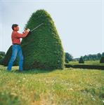 Rent a Hedge Trimmer, Gas Powered 24^